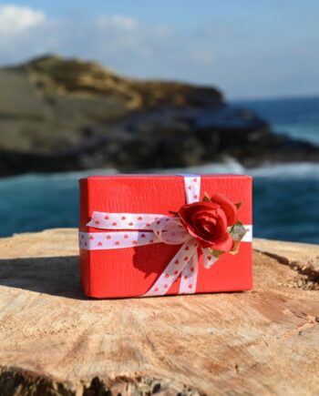 Pretty Red Box with Artisan Lovely Chocolates in Various Flavours size L 200gr