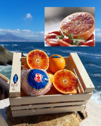 10kg Delicious Handpicked Sicilian Blood Oranges in Respect of Nature